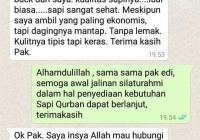 Jual Sapi Qurban 2017 (12)