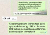 Jual Sapi Qurban 2017 (9)
